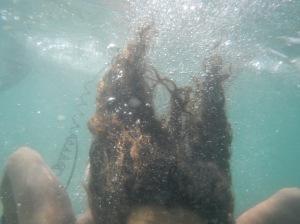 inmersion en busca de Vida